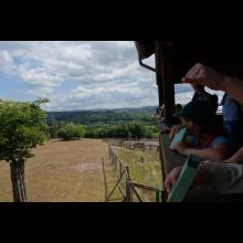 Wölflingsaktion im Tierpark Frankenberg<br/>Blick in den Wildpark (die Tiere verstecken sich noch)