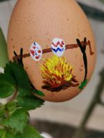 Osteraktion 2021<br/>Eier, auf Feuer geröstet
